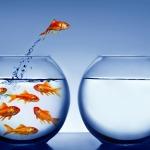 5 enemigos para que no hagas el cambio