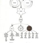 El modelo del Universo Vedanta (II): Las Tres Gunas