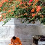 La gran decisión del monje
