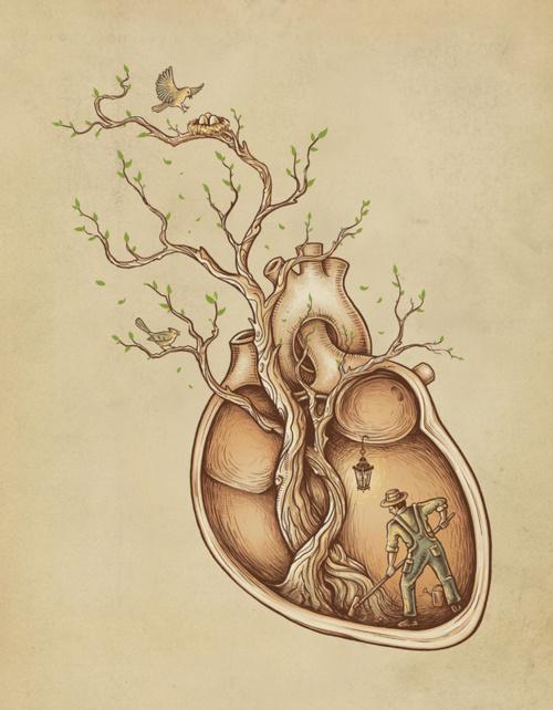 corazon-cultivado