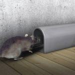 La insignificante trampa para Ratones
