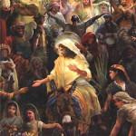 El Burro en el que montaba Jesús (Recordado en OMNIA)