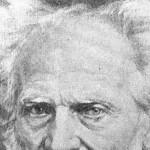 SCHOPENHAUER, el filosofó que abordó con profundidad la filosofía ADVAITA-NO DUAL