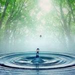 """Meditación de CENTRAMIENTO en la realidad que """"YO SOY"""""""