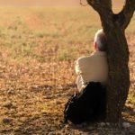 La vigilancia del meditador